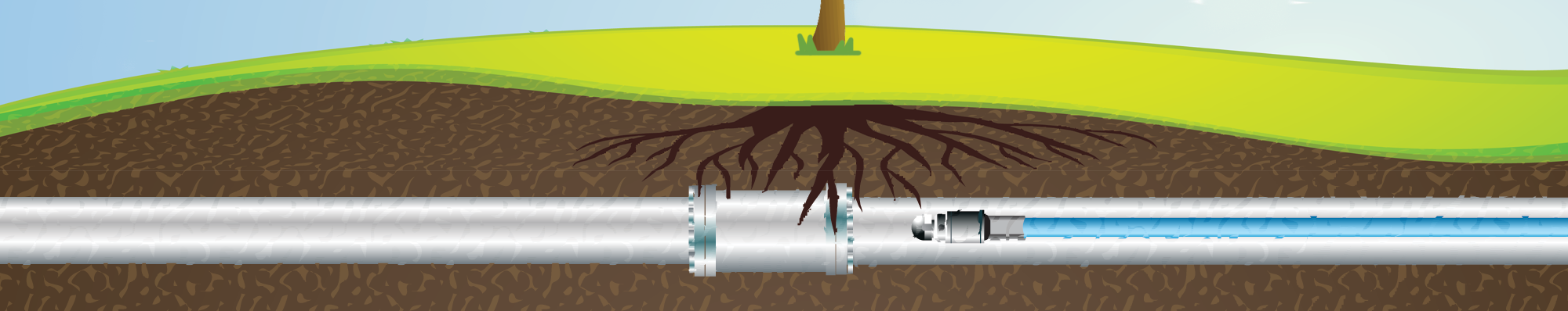 Graphic of tree root intrusion starting in sewer pipe.