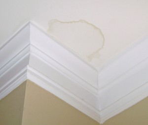 Water Stain On Ceiling or Wall