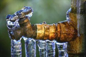 Froze hose bibbs