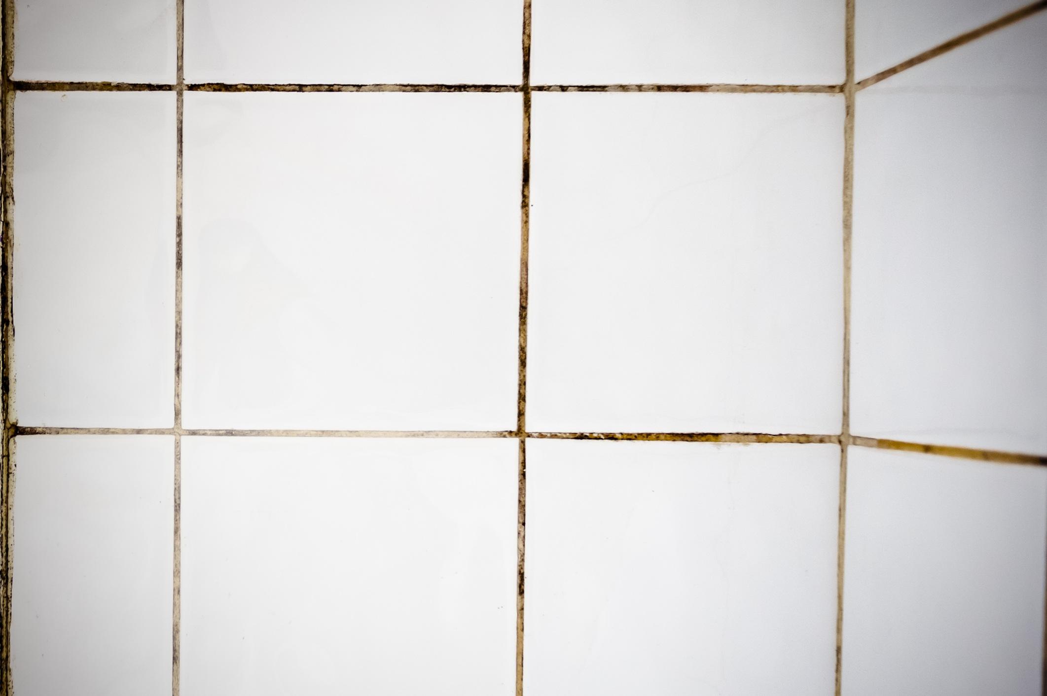 How to Clean Your Bathroom Tiles | Len The Plumber