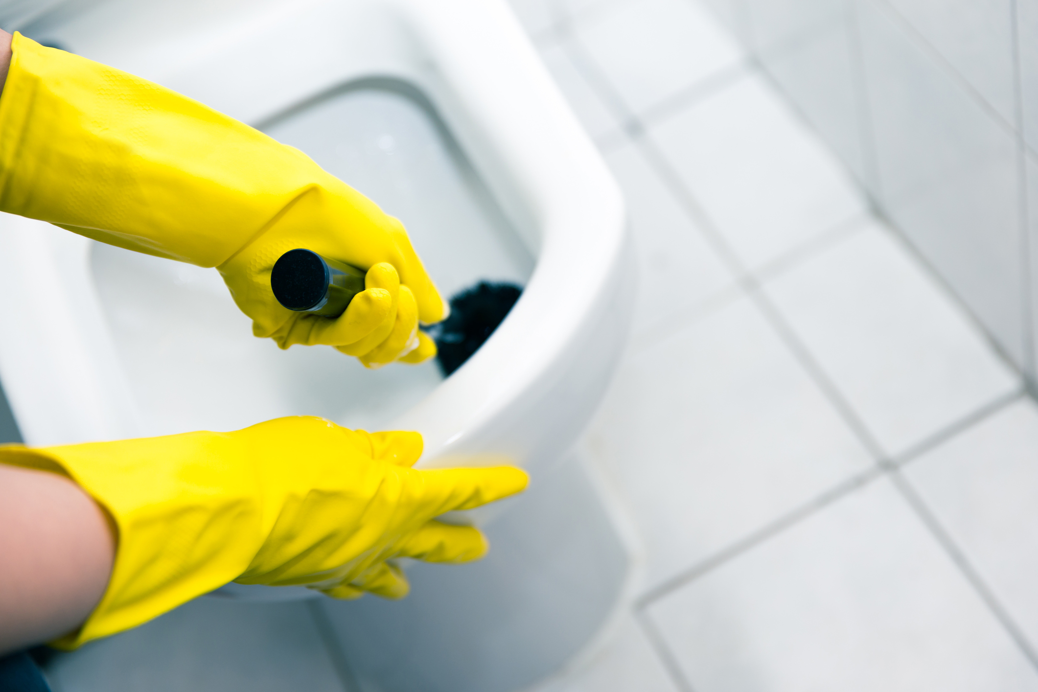 The Right Way To Clean Your Toilet Len The Plumber