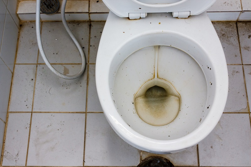replacing your old toilet can save you money and prevent plumbing emergencies