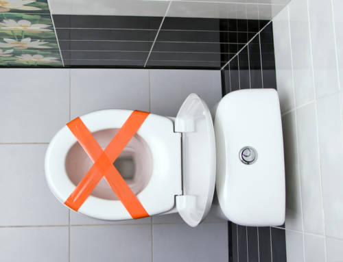 5 Ways to Unclog Your Toilet Without a Plunger
