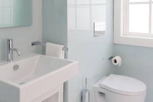 preventing mold growth in your bathroom