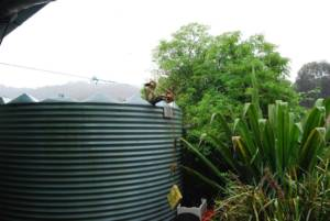 Len The Plumber blog rainwater harvesting