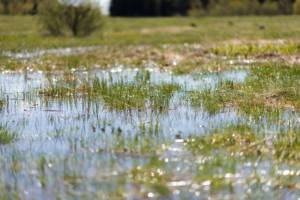 flooding and your sump pump